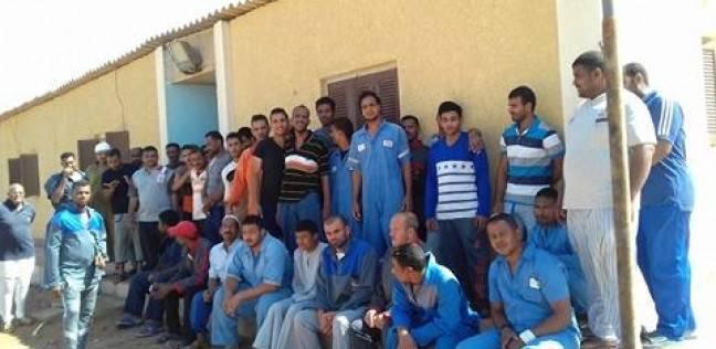 بالصور| إضراب المئات من العمالة المؤقتة في شركة بترول بلاعيم عن العمل