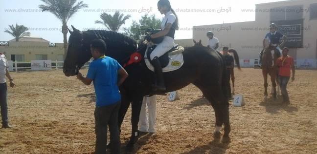 محافظ جنوب سيناء: انطلاق بطولة جديدة للفروسية بشرم الشيخ.. مارس المقبل