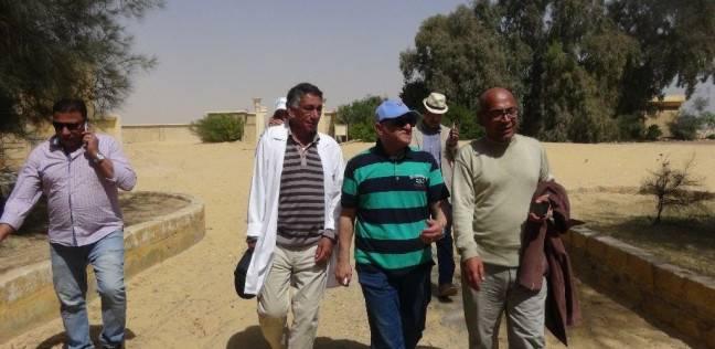 رئيس جامعة المنيا يتفقد أعمال الترميم والحفريات بمنطقة تونا الجبل