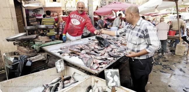 «سوق السمك فى القنطرة»: «هنا الطازة.. اليوم بيومه»
