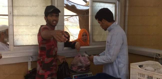 بالصور  بدو سيناء يتولون تسويق منتجات مزارع جهاز التعمير