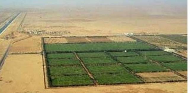 """شروط الحصول على قطعة أرض في الـ""""1.5 مليون فدان"""" وطريقة السداد"""
