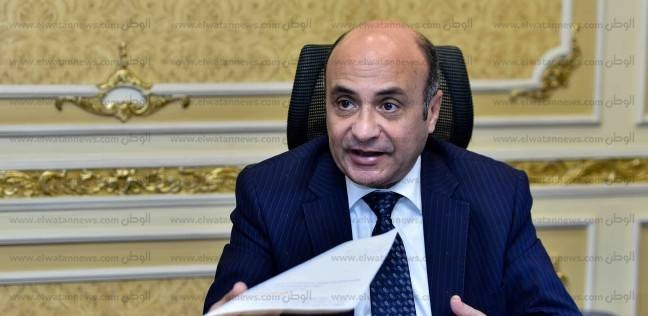 عمر مروان: ملف حقوق الإنسان المصري نال استحسان 65 دولة