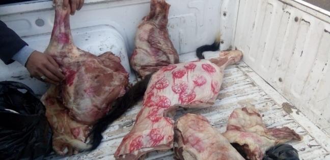 ضبط 207 كيلو لحوم فاسدة خلال حملة على مطاعم وأسواق في المنيا