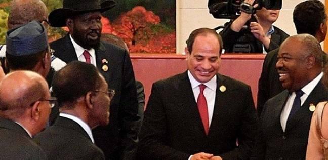 مساعد وزير الخارجية الأسبق: السيسي حريص على استعادة مكانة مصر بإفريقيا