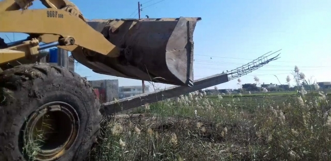 إزالة 65 حالة تعد على الأراضي الزراعية في بورسعيد