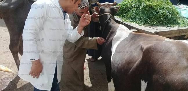 قوافل علاجية بيطرية مجانية تستهدف القرى الأكثر احتياجا في الفيوم