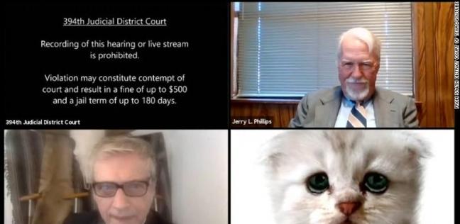 المحامي أثناء حضوره الجلسة بفلتر قطة