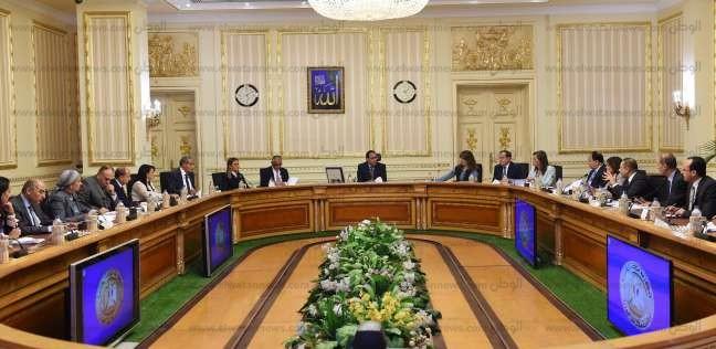 مجلس الوزراء بشكل لجنة لمراجعة ترفيق وتخصيص الأراضي الصناعية