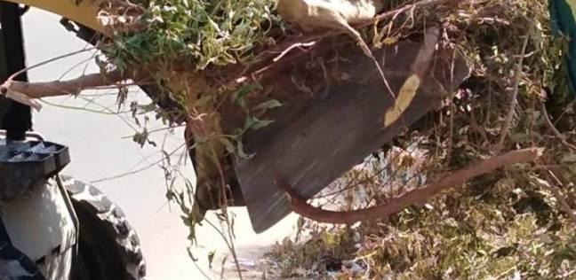 حملة لإزالة المخلفات وتهذيب وتقليم الأشجار بمنطقة الشاليهات في رأس سدر