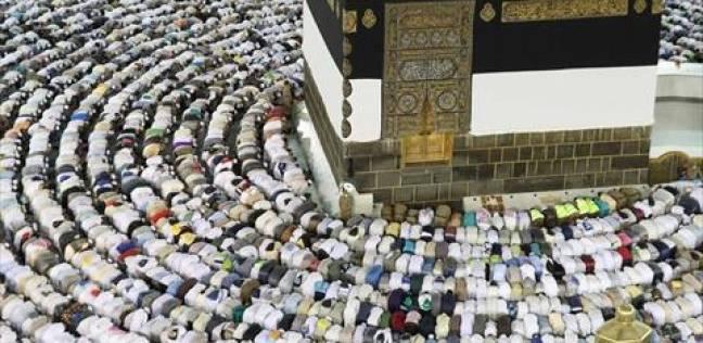 """رئيس """"الحج"""": تسهيل انتقال أهالي الشهداء حتى فنادقهم بمكة"""