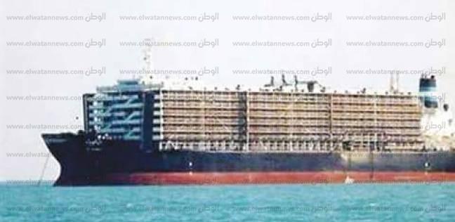 ميناء غرب بورسعيد يستقبل 1046 رأس ماشية حية