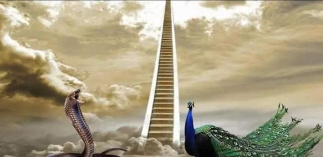 حقيقة الطاووس والثعبان من الجنة