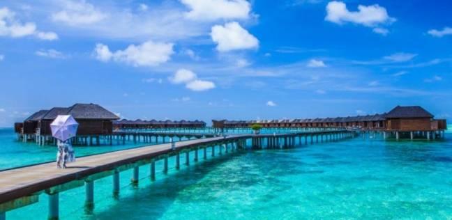 منتجع في المالديف يعلن عن أفضل وظيفة في العالم
