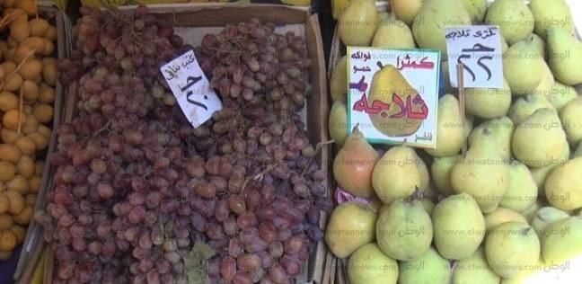 """""""تجارية الفيوم"""": ندرس إقامة شوادر لبيع الخضراوات والفاكهة بسعر الجملة"""