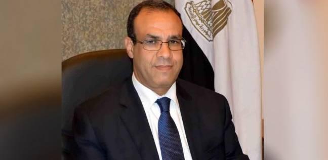 سفير مصر بألمانيا: لا توجد أي معوقات بمراكز الاقتراع وتسير بشكل طبيعي