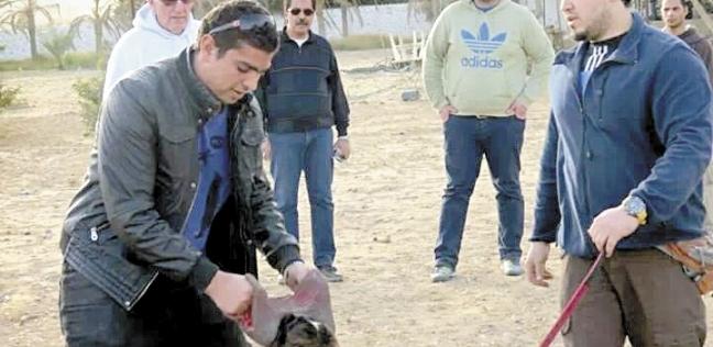 أثناء تدريب أحد كلاب الحراسة