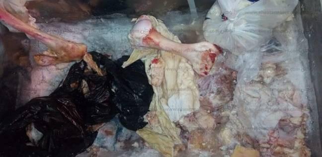 """""""الصحة"""": ضبط لحوم فاسدة وتحرير 50 محضر """"غلق وخطر داهم"""" بمطروح"""