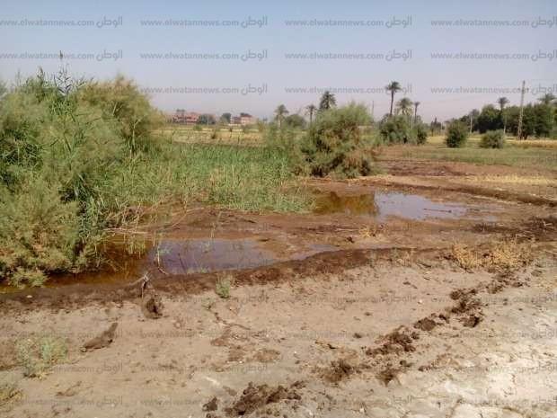 """""""أرض مستنقعات"""".. المياه الجوفية تهدد ببوار 400 فدان.. و""""ري قنا"""" تتحرك"""