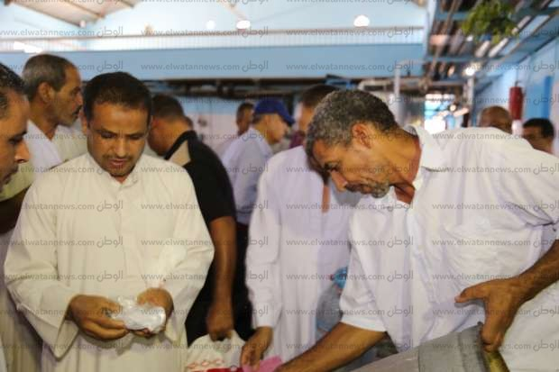 محافظ قنا: تجديد خط الطرد بشبكة الصرف في شارع مصطفى كمال