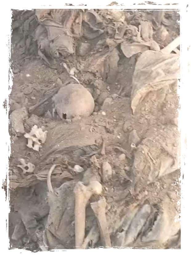 7 مشاهد من العثور على جماجم ورفات 32 جثة بالقليوبية.. فيديو - المحافظات - الوطن