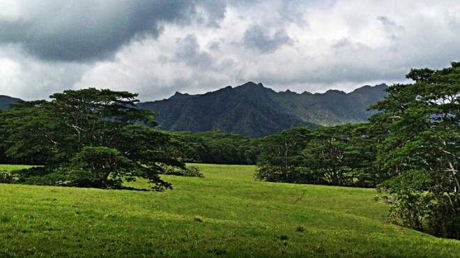 مخرج Jurassic Park 4 ينشر صورة حصرية لجزيرة