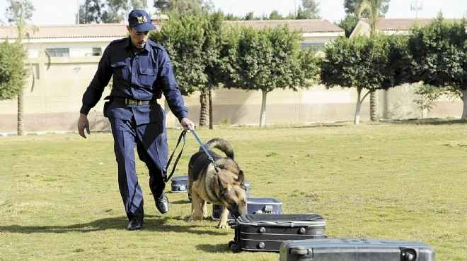 مصدر أمني: وزعنا رجال الحماية المدنية وخبراء المفرقعات لتأمين اللجان
