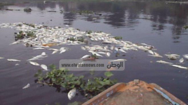 خطورة التلوث البيئي في ندوة