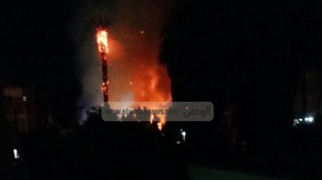 بالصور| حريق يلتهم أشجار مستشفى منفلوط بأسيوط