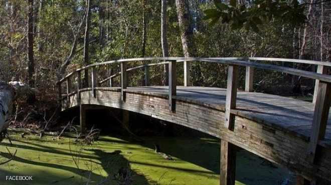 صورة فوتوغرافية تتسبب في انهيار جسر وإصابة 14 شخصا