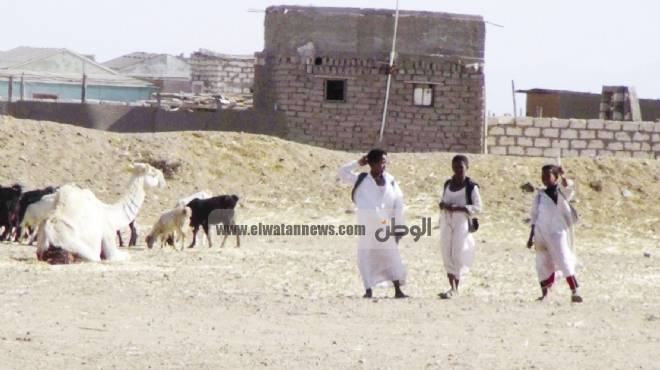 وزير البيئة السوداني: حلايب وشلاتين أرض مصرية سودانية.. وهناك تعاون بيئي بين البلدين
