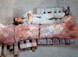 بالصور| فلاح في الأرجنتين يعثر على عظام أكبر