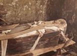 خبير آثار: الحضارة المصرية القديمة عمرها عشرة آلاف عام