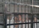 إحالة 10 إخوان للجنايات بتهمة أعمال عنف لتعطيل الاستفتاء علي الدستور بسوهاج