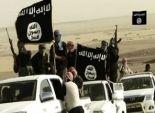 المرصد السوري: مقاتلو المعارضة يحاولون دفع