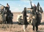 تنظيم الدولة الإسلامية يستولي على بلدتين في شمال سوريا