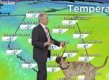 بالفيديو| مذيع يصطحب كلبا أثناء تقديم النشرة الجوية