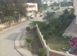 تقليم الأشجار ورفع المخلفات من شوارع برج العرب بالإسكندرية