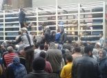 العشرات يتجمهرون أمام مستودعات الإسكندرية لنقص إسطوانات البوتاجاز