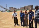 رئيس مدينة إسنا يتابع توريد القمح المحلي للمطاحن في الأقصر