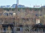 حرائق الغابات تهدد بكارثة جديدة في مفاعل