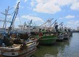 شيخ الصيادين بعزبة البرج يطالب بزيادة